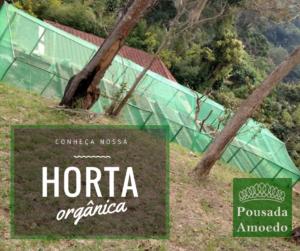 Horta orgânica amoedo1